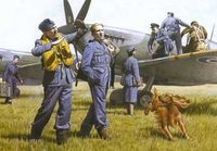 WWII RAF Pilots and Ground Personnel 39-45 - Image 1