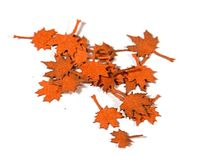 Maple Red - Dry Leaves - Image 1
