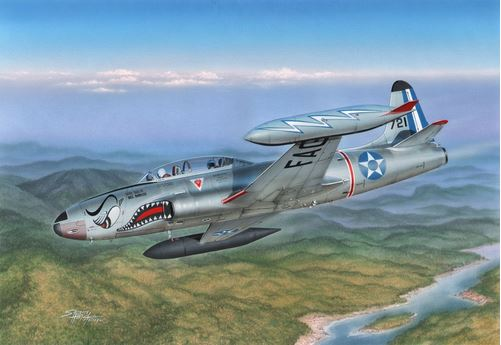 "T-33 ""Japanese and South American T-Birds"" - Image 1"