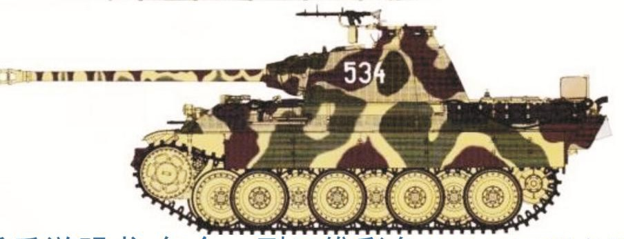 Panther A/G Camouflage - Image 1