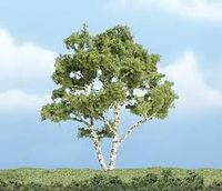 Premium Trees 4In. Birch Tree 1/ - Image 1