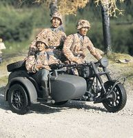 BMW R75 with Sidecar - Team